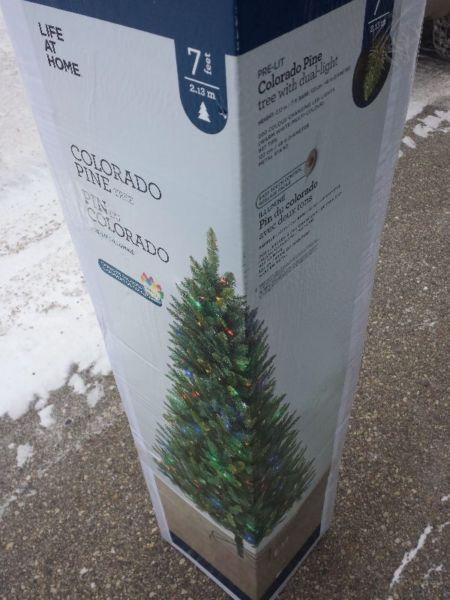 ******COLORADO PINE CHRISTMAS TREE*****