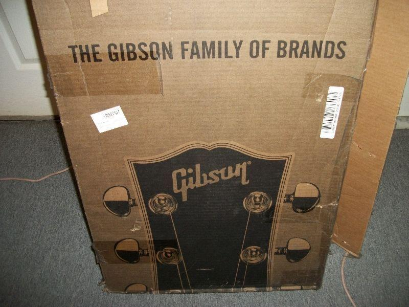 GIBSON LES PAUL CASE CANDY, TRUSS ROD COVER & ACCESSORIES