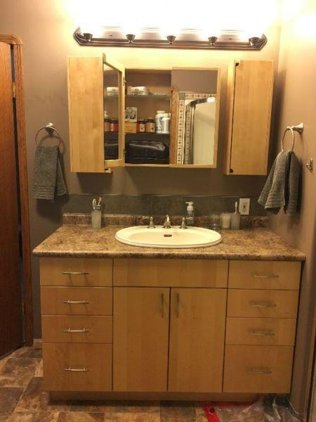 Ikea 54 inch Bathroom Vanity