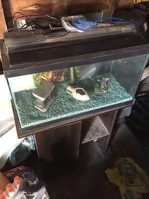 40 Gallon Aquarium/Terarium includes wooden stand