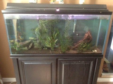 55 Gallon Aquarium with Stand