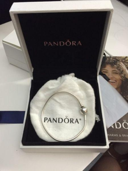 Wanted: Authentic Pandora Essence Bracelet (Charms Available)