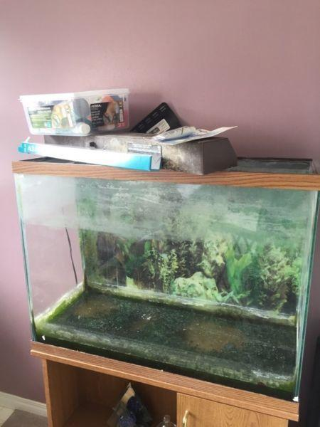 50 Gallon Fish Tank and Stand and Accessories- $50