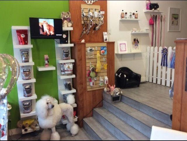 Canada's top pet business for sale, , ON